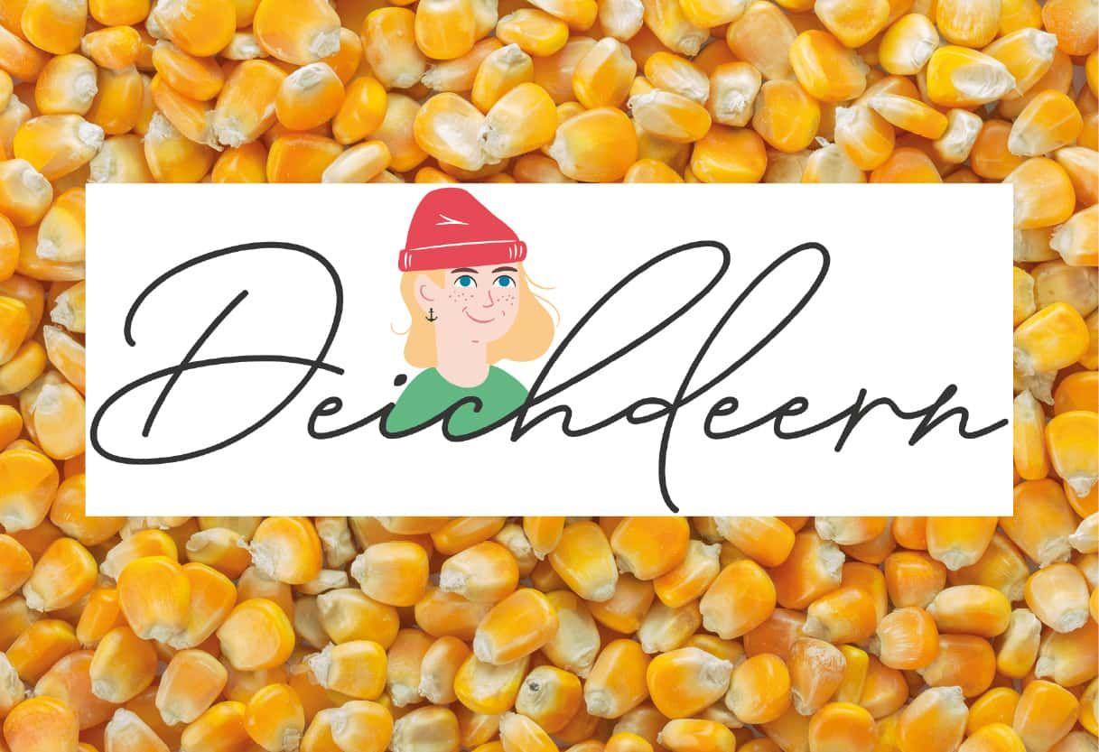 Maiszüchtung: Von der Nische zum Star